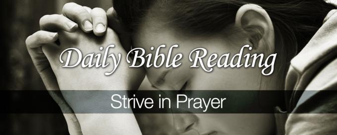 Strive-in-Prayer